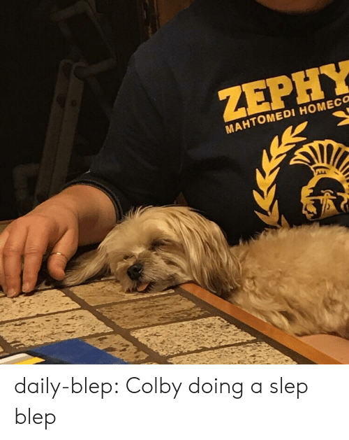 Tumblr, Blog, and Com: ZEPHY  MAHTOMEDI HOMECO daily-blep:  Colby doing a slep blep