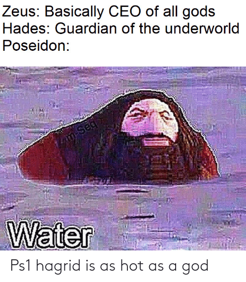 Zeus: Zeus: Basically CEO of all gods  Hades: Guardian of the underworld  Poseidon:  m-Seq  Water Ps1 hagrid is as hot as a god