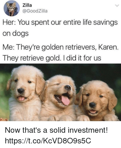 Dogs, Funny, and Life: Zilla  @GoodZilla  Her: You spent our entire life savings  on dogs  Me: They're golden retrievers, Karen.  They retrieve gold. I did it for us Now that's a solid investment! https://t.co/KcVD8O9s5C