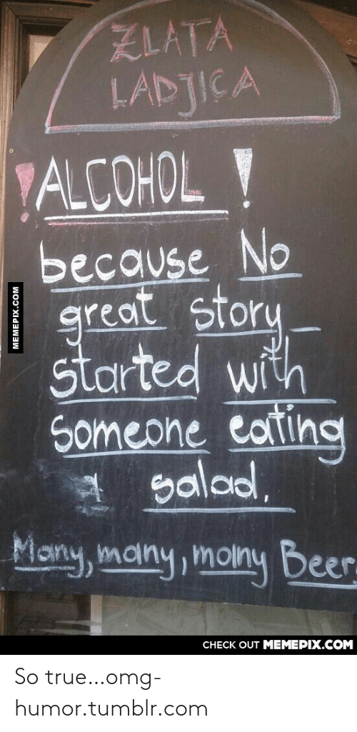 Great Story: ZLATA  LADJICA  ALCOHOL Y  because No  |  great story  started with  Someone cating  salad.  Many, many, moiny Beer.  CНECK OUT MЕМЕРIХ.COM  MEMEPIX.COM So true…omg-humor.tumblr.com