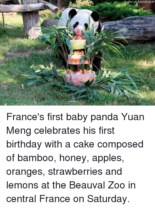 Birthday, Memes, and Panda: ZooParc de Beauval via AP France's first baby panda Yuan Meng celebrates his first birthday with a cake composed of bamboo, honey, apples, oranges, strawberries and lemons at the Beauval Zoo in central France on Saturday.