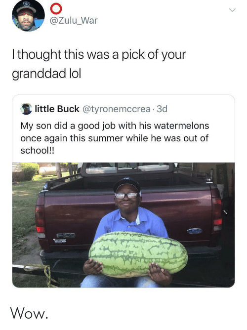 Lol, School, and Wow: @Zulu_War  Ithought this was a pick of your  granddad lol  little Buck @tyronemccrea 3d  My son did a good job with his watermelons  once again this summer while he was out of  school!!  Mrees Wow.